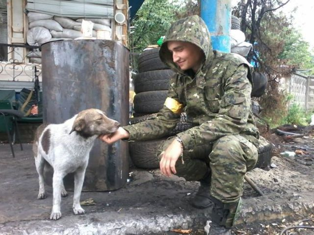 A separatist dog who switched sides, defecting to Ukraine. They call him Ashes.