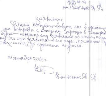 Sasha Kolchenko's letter to the Consul.